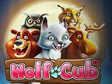 Игровой аппарат Wolf Cub